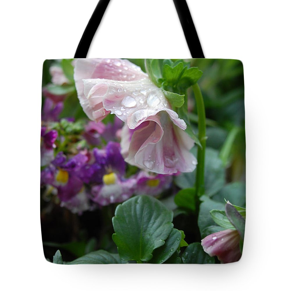 Pansy Tote Bag featuring the photograph Dewy Pansy 4 by Amy Fose