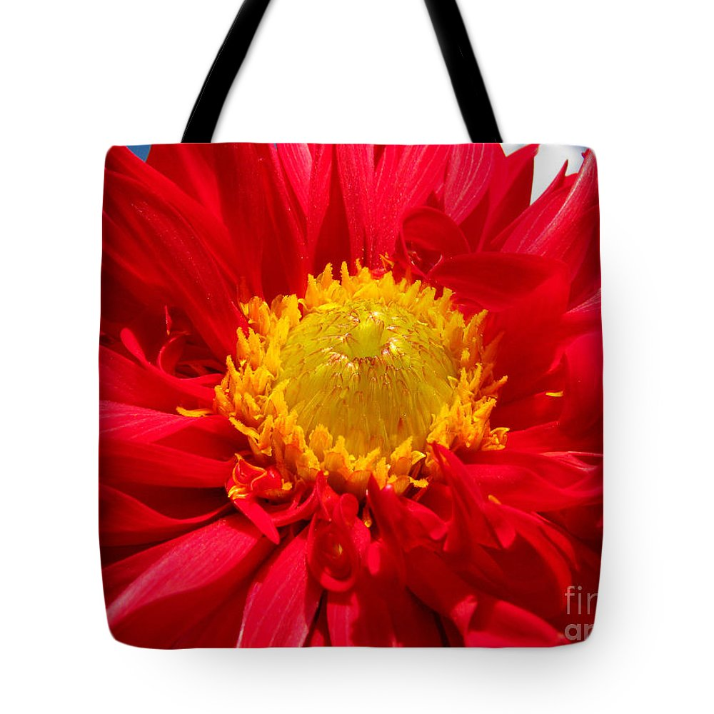 Dhalia Tote Bag featuring the photograph Dhalia by Amanda Barcon