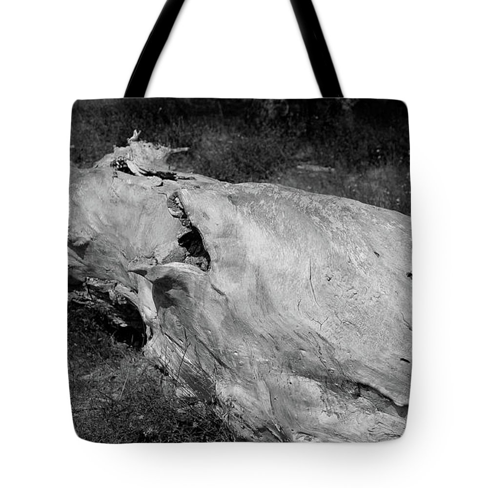 Trunk Tote Bag featuring the photograph Diagonal by Kamen Ruskov
