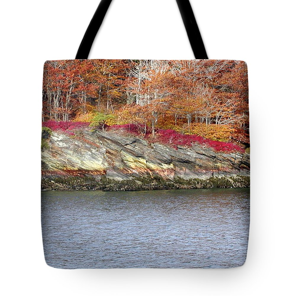 Tree Tote Bag featuring the photograph Diamond Island-mineral Deposits In Granite by Faith Harron Boudreau