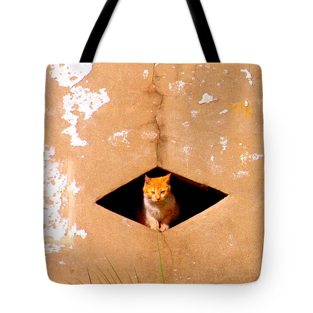 Cat Tote Bag featuring the photograph Diamond Kitty by Albert Stewart