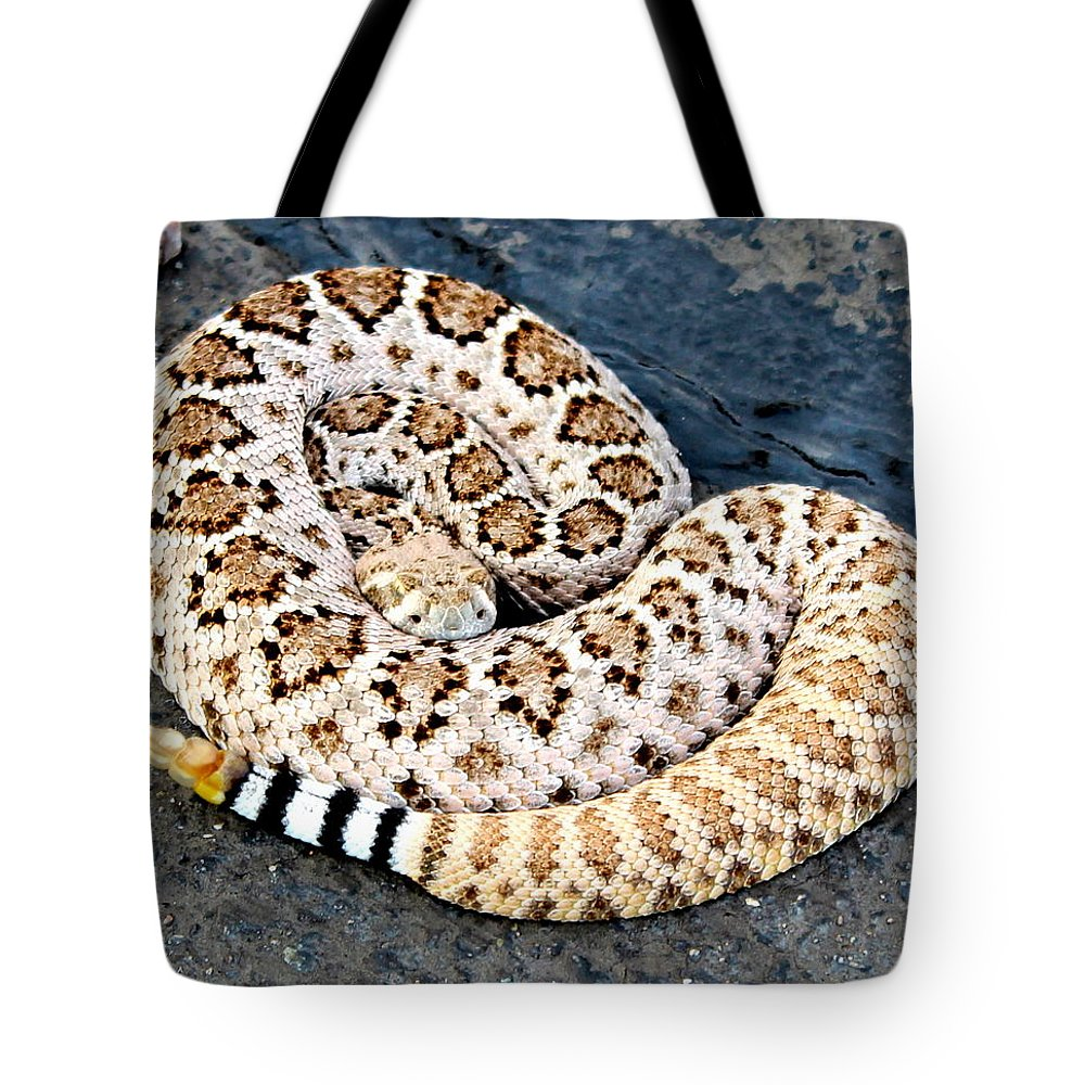 Rattlesnake Tote Bag featuring the photograph Diamondback Coils by Sheryl Mayhew