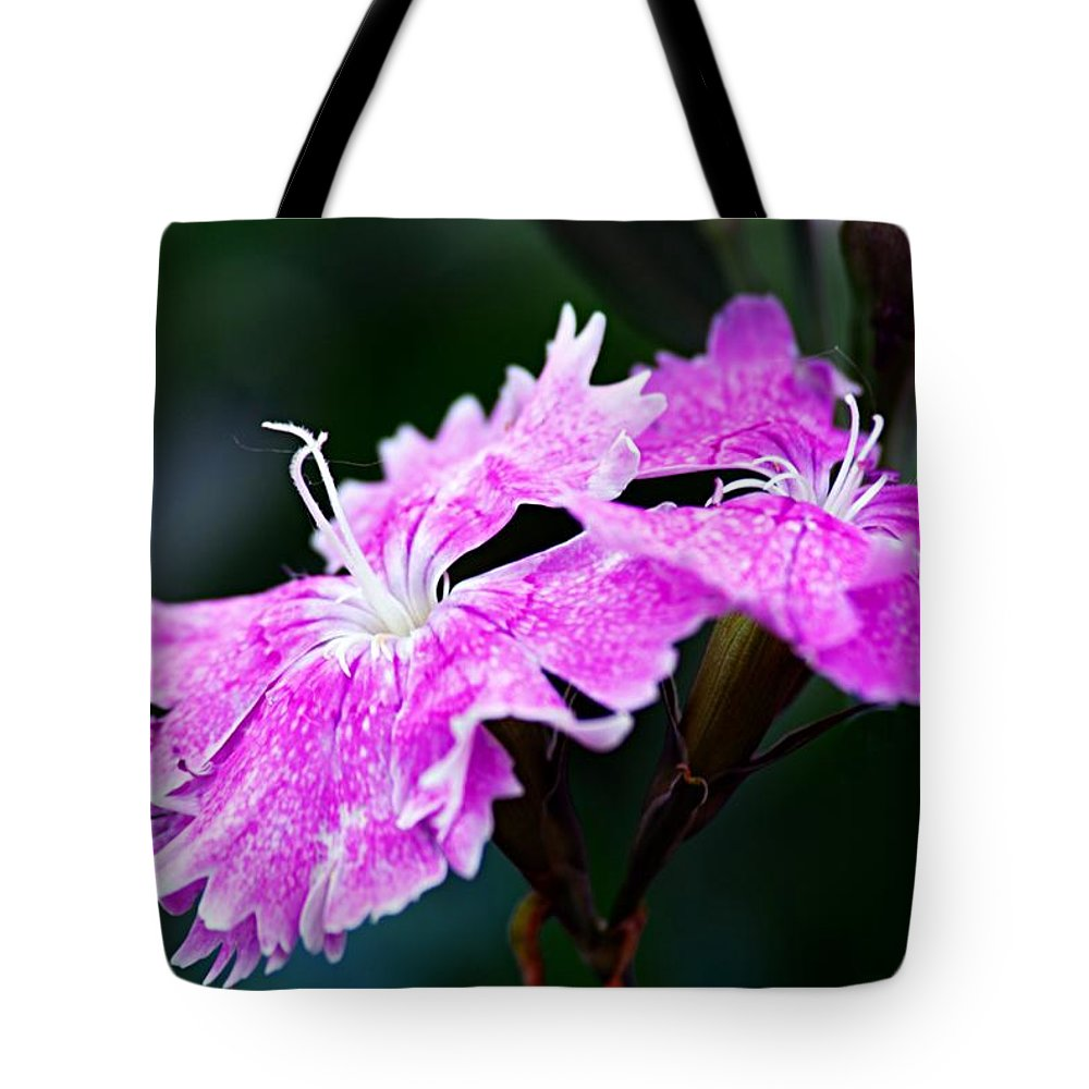 Flower Tote Bag featuring the photograph Dianthus by Larry Ricker