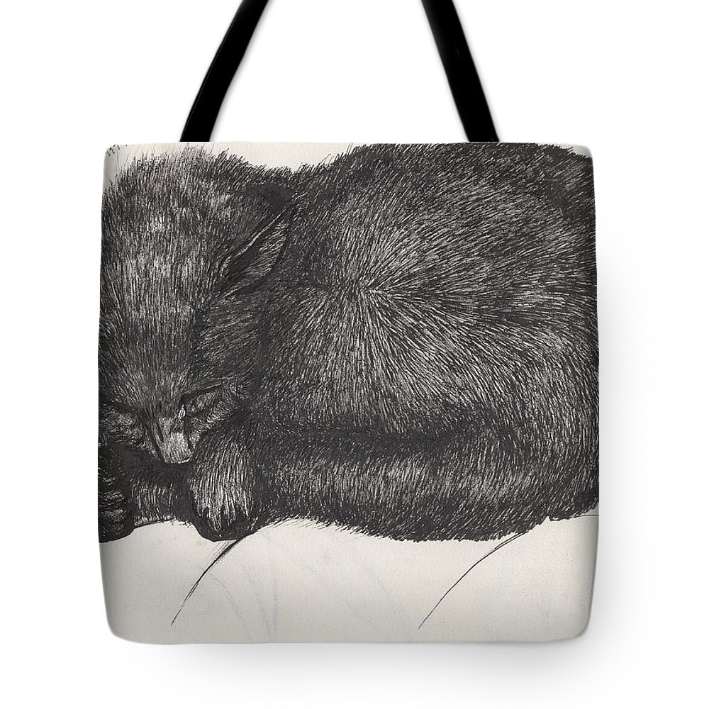 Cat Tote Bag featuring the painting Diddy Big Face by Vincent Alexander Booth