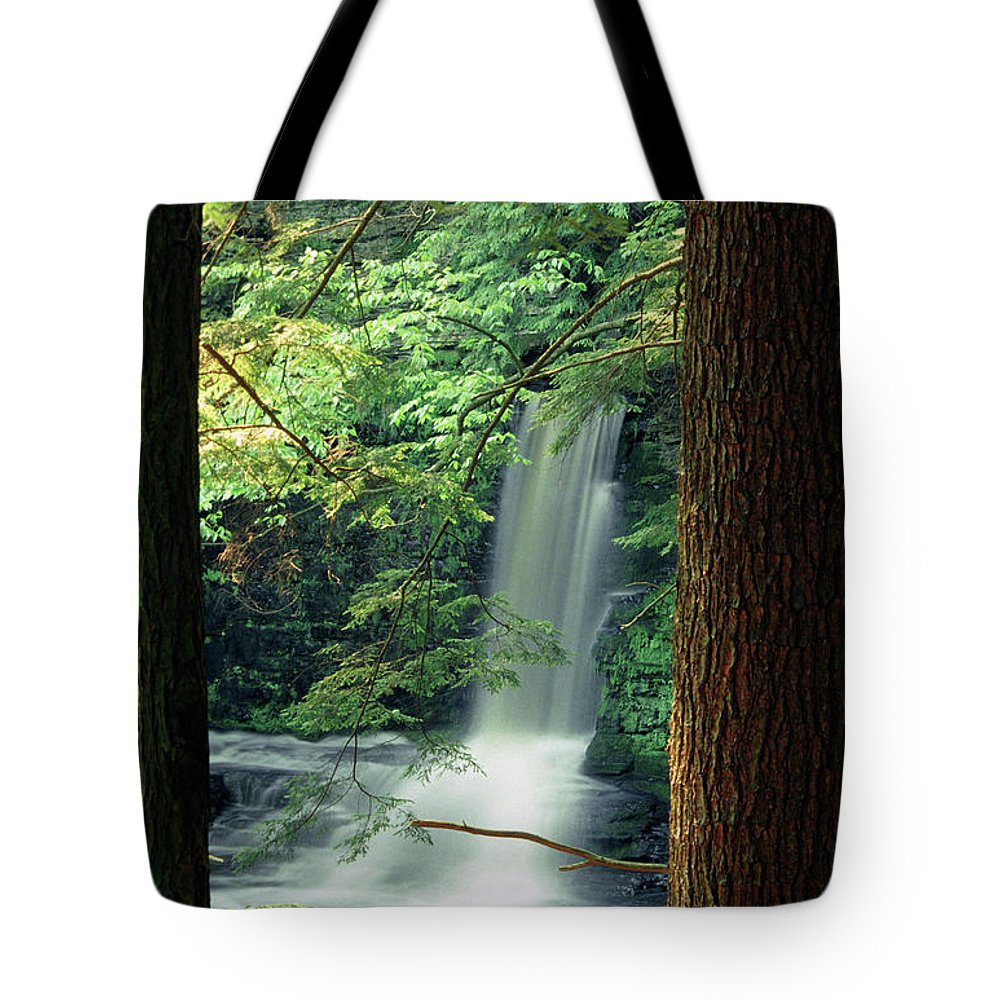 Falls Tote Bag featuring the photograph Dingmans Falls Dingmans Ferry Pennsylvania by Michelle Wiarda-Constantine