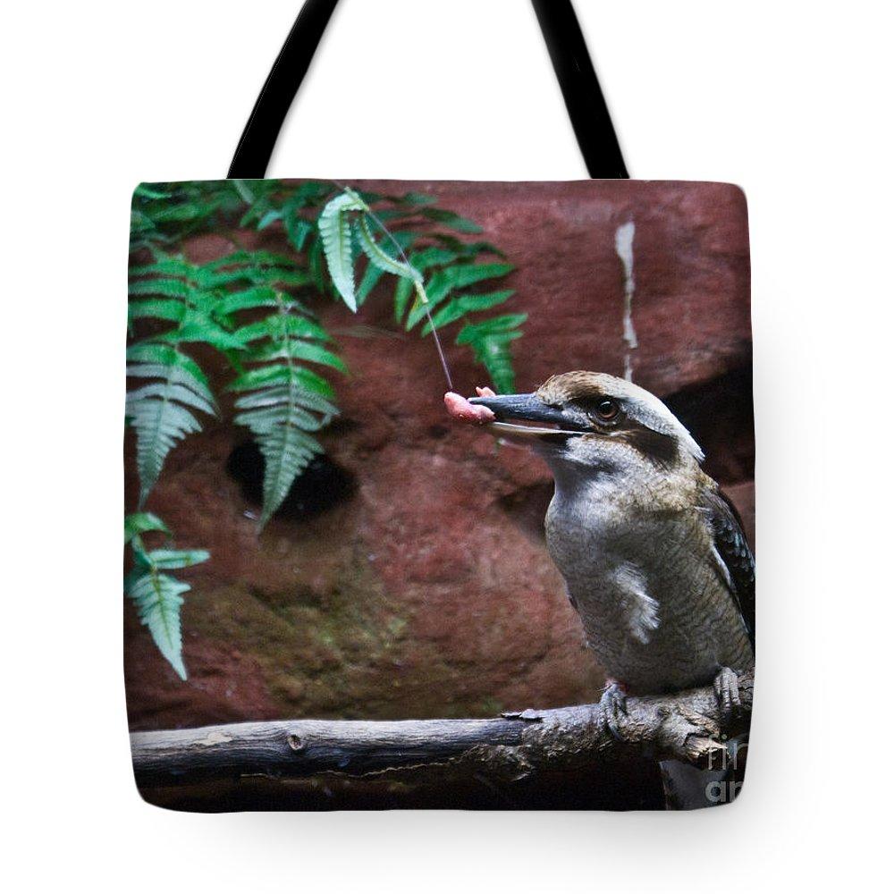Dinner Tote Bag featuring the photograph Dinner Time For Mister Bird by Douglas Barnett