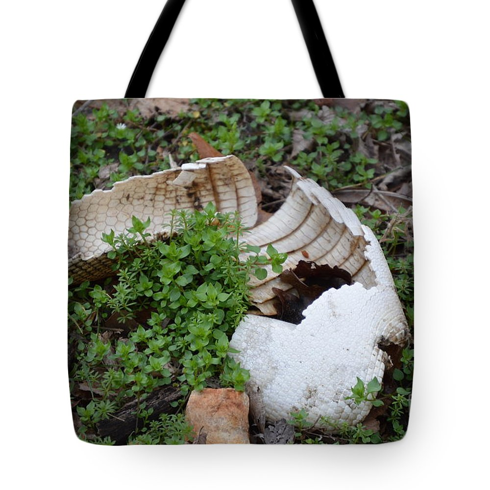 Animals Tote Bag featuring the photograph Dinosaur Egg by Diane Friend
