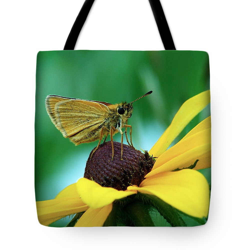 Daisy Tote Bag featuring the photograph Dion On A Brown Eyed Susan by Michael Peychich