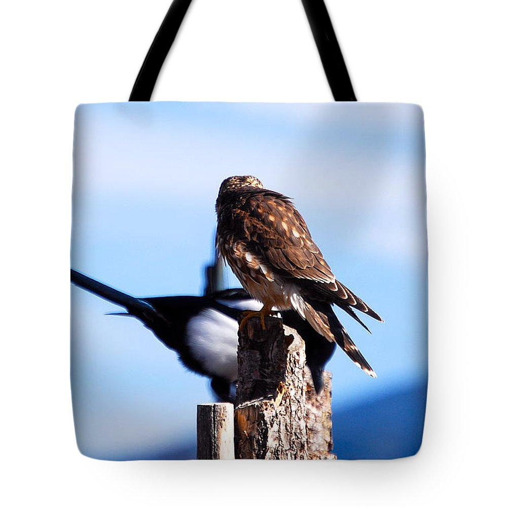 Wildlife Tote Bag featuring the photograph Disputed Perch by Rupert Chambers
