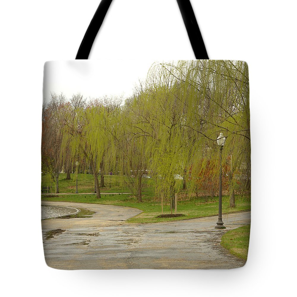 Landscape Park Washington Willow Tree Lake Tote Bag featuring the photograph Dnrf0401 by Henry Butz