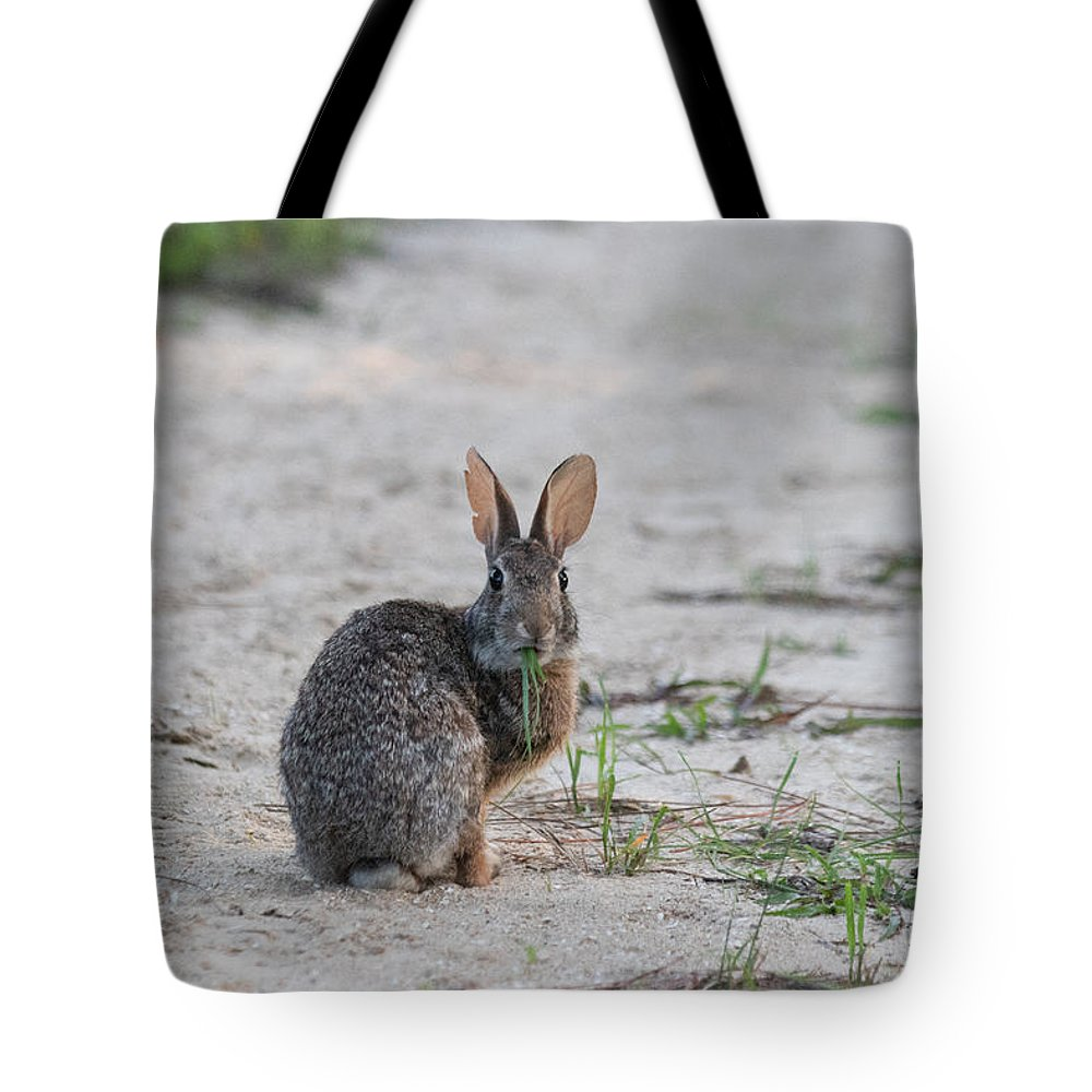 Rabbit Tote Bag featuring the photograph Do I Have Something On My Lips by JR Cox