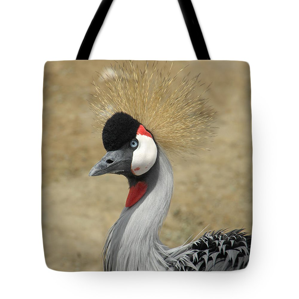 Bird Tote Bag featuring the photograph Does My Hair Look Ok by Donna Blackhall