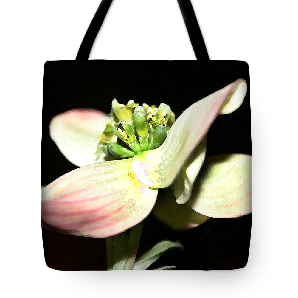 Landscape Tote Bag featuring the photograph Dogwood Blossom by Mary Haber
