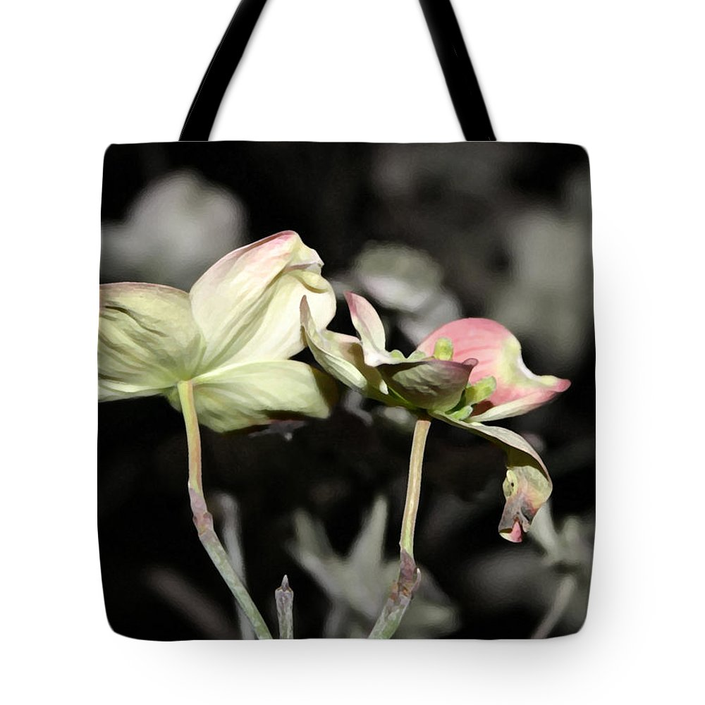 Dogwood Tote Bag featuring the photograph Dogwood by Mary Haber