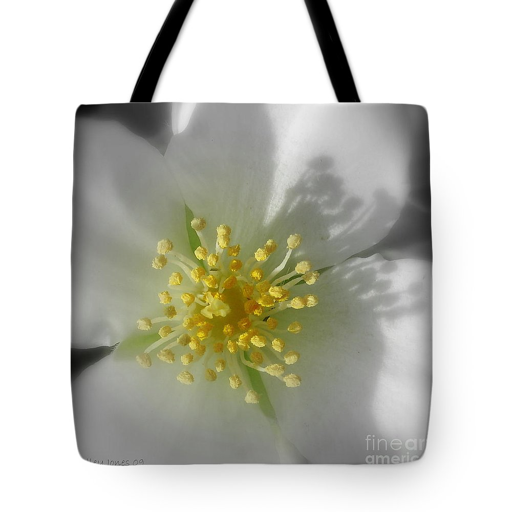 Photography Tote Bag featuring the photograph Dogwood by Shelley Jones
