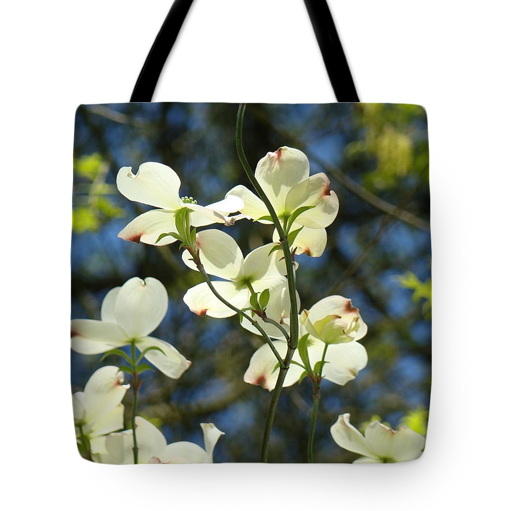 Dogwood Tote Bag featuring the photograph Dogwood Tree Landscape Art Print Blue Sky White Dogwood Flowers by Baslee Troutman