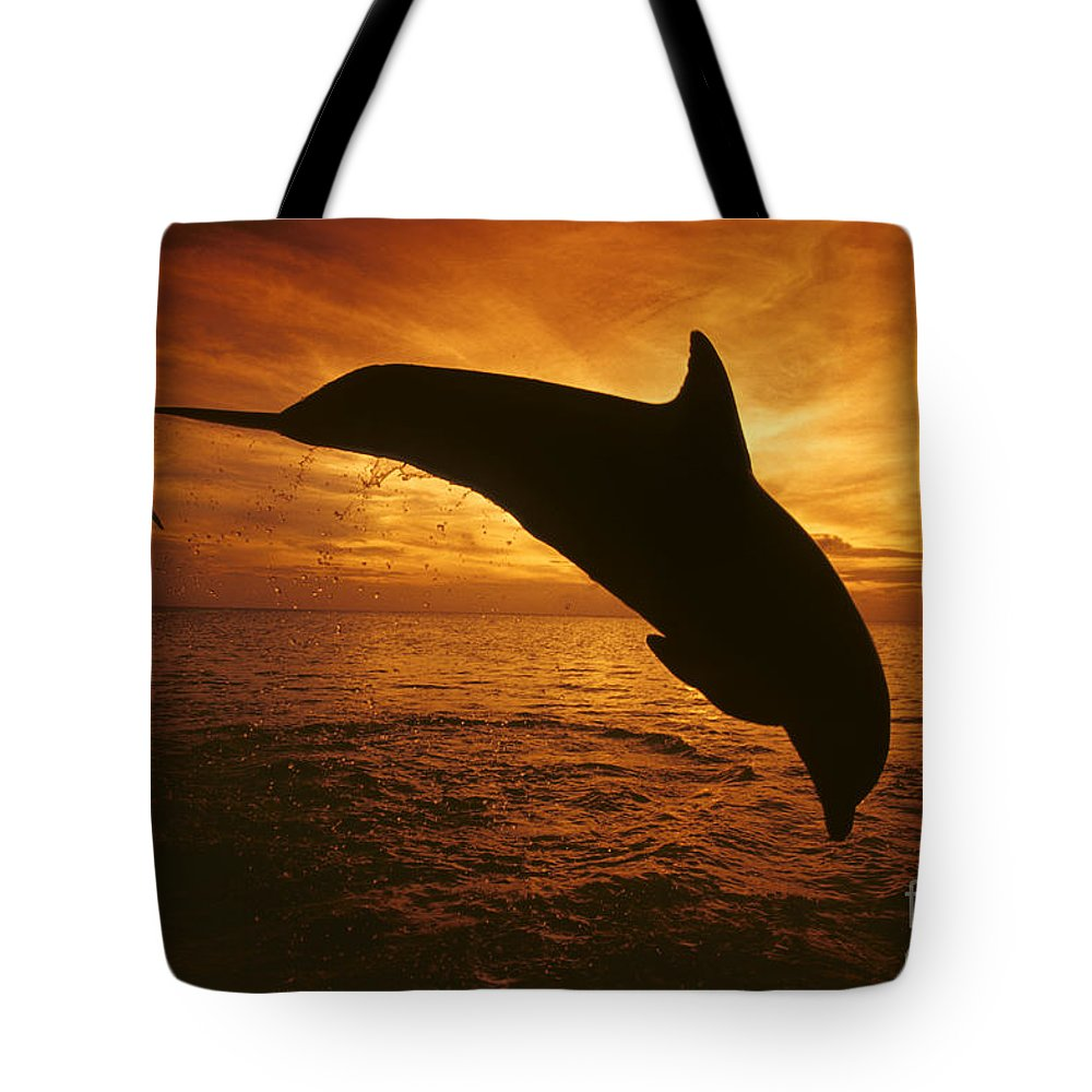 Amaze Tote Bag featuring the photograph Dolphins And Sunset by Dave Fleetham - Printscapes