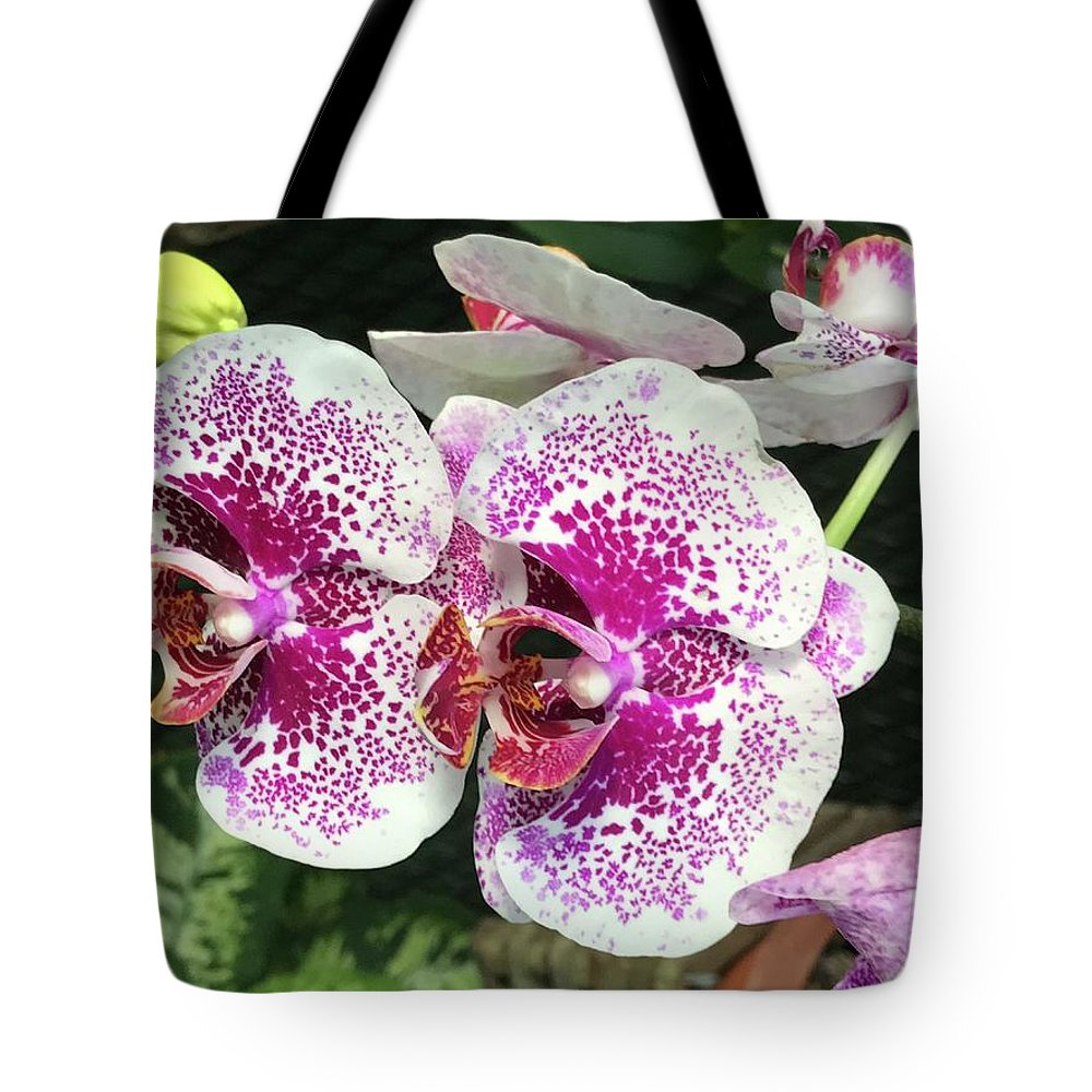 Flowers Tote Bag featuring the photograph Double Beauty by Jean Wolfrum