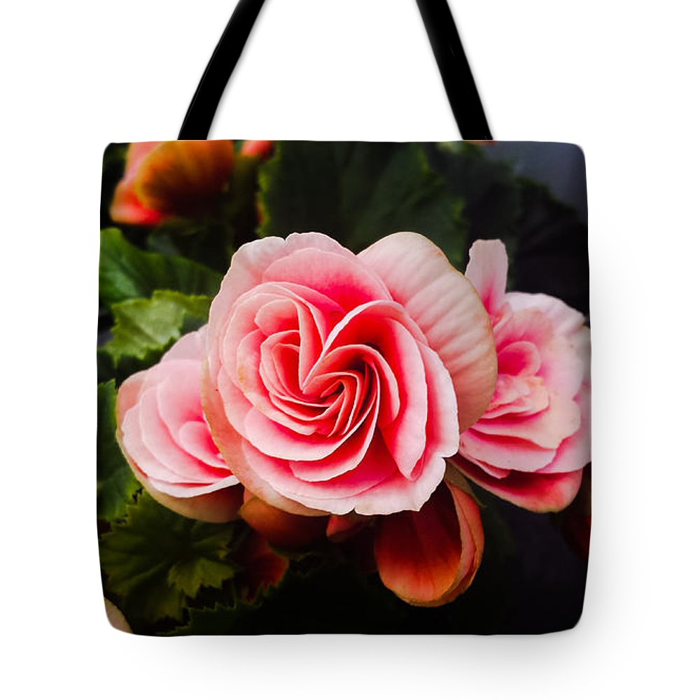 Double Tote Bag featuring the photograph Double Begonia by Jennifer Kohler