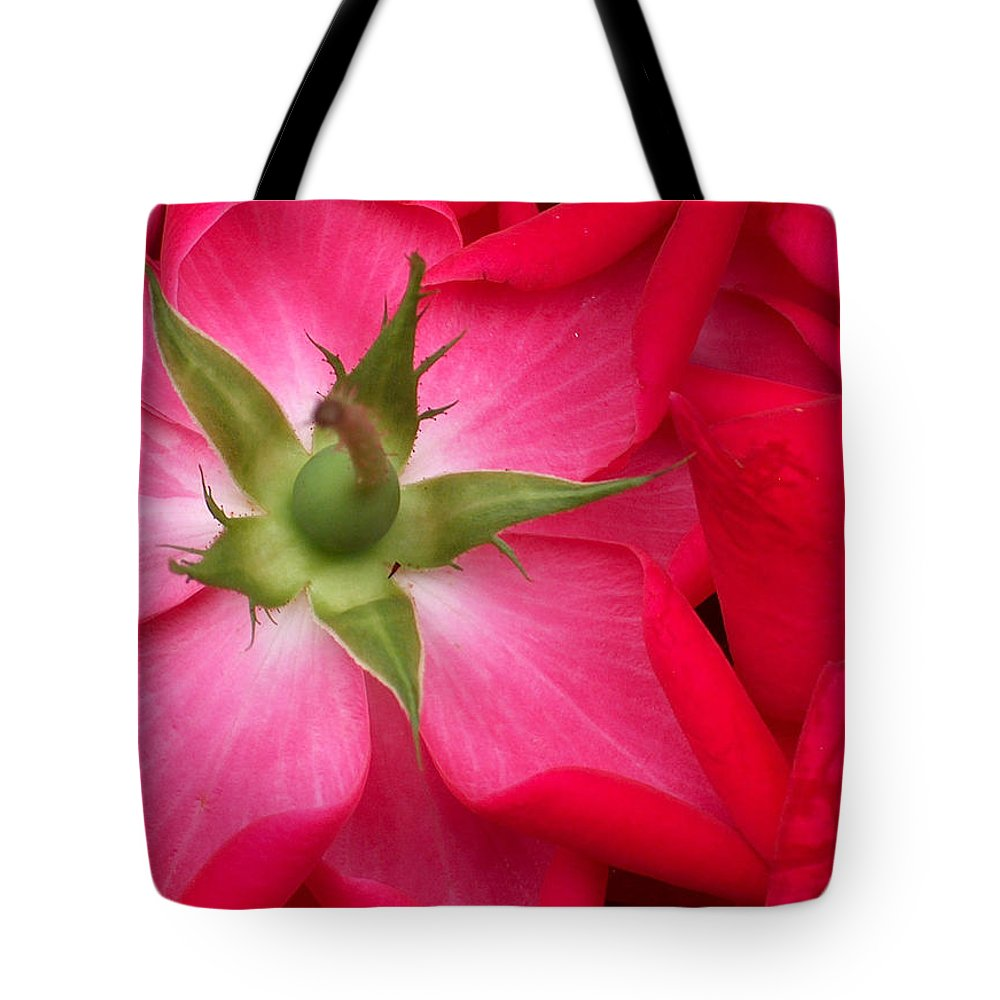 Rose Tote Bag featuring the photograph Double Knockout Rose by Racquel Morgan