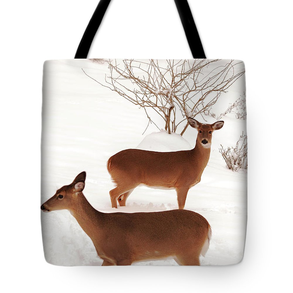 Deer Tote Bag featuring the photograph Double Trouble by Lori Tambakis