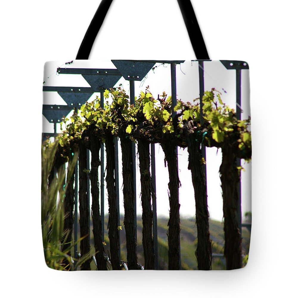 Grape Row Tote Bag featuring the photograph Down The Row by Brooke Roby