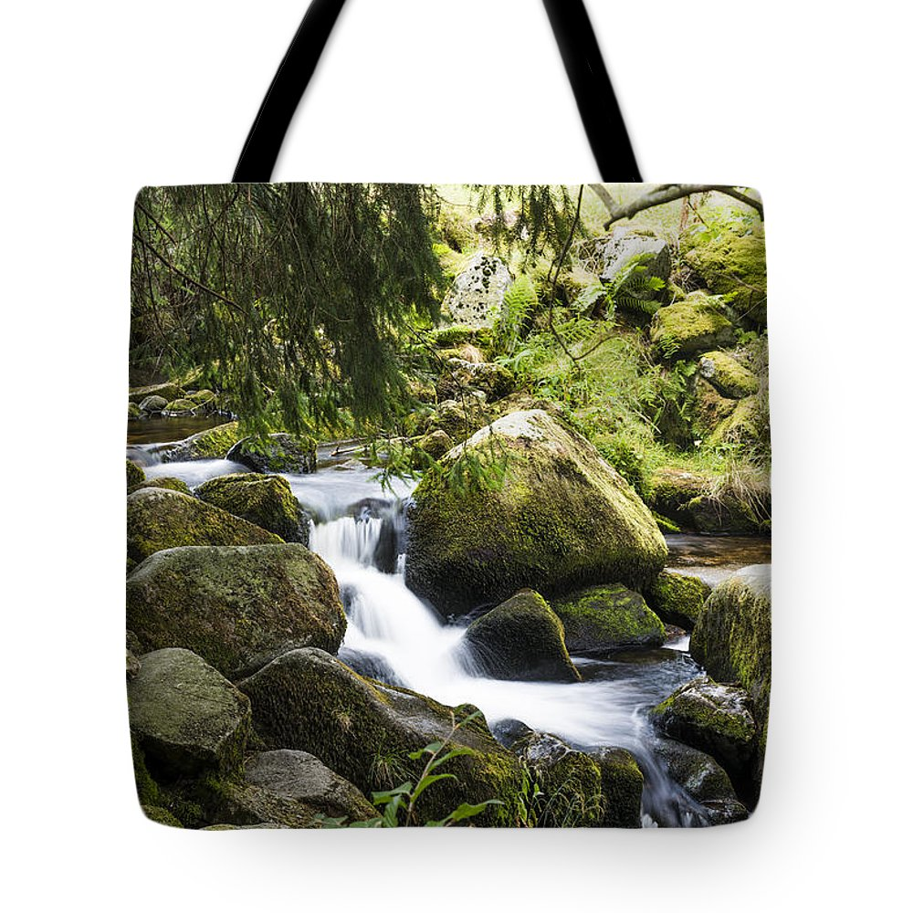 Landscape Tote Bag featuring the photograph Down To The River by Omry Dinner