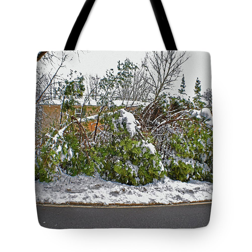 Down Trees Tote Bag featuring the photograph Down Trees by Joseph F Safin