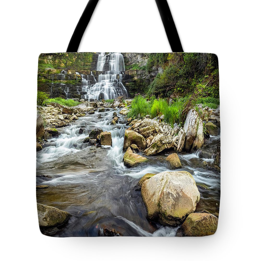 New York Tote Bag featuring the photograph Downstream From Chittenango Falls by Karen Jorstad
