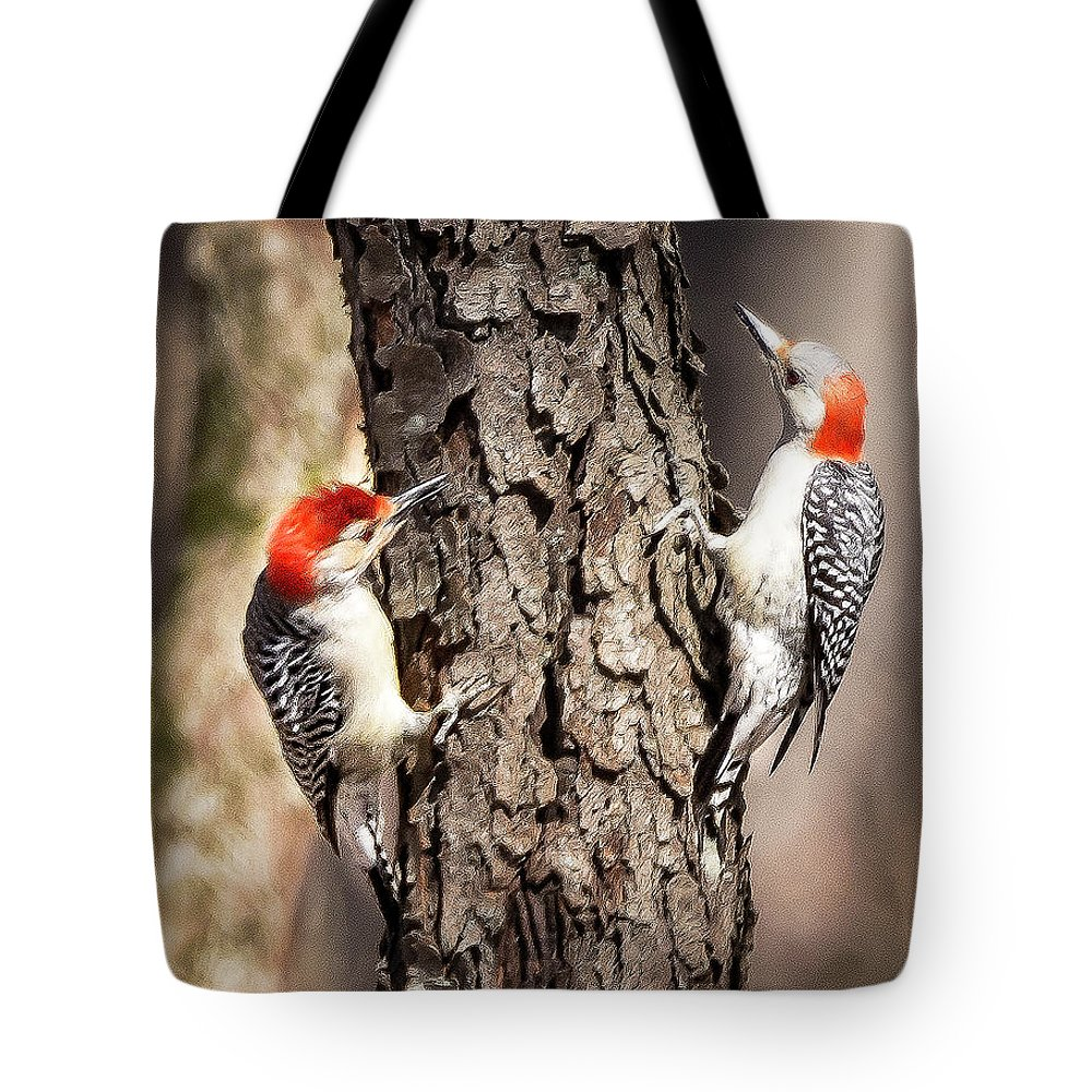 Nature Wildlife Woodpecker Bird Birds Mating Pair Woodpeckers Outdoor Tote Bag featuring the photograph Downy Woodpeckers by Roy Bradstrum