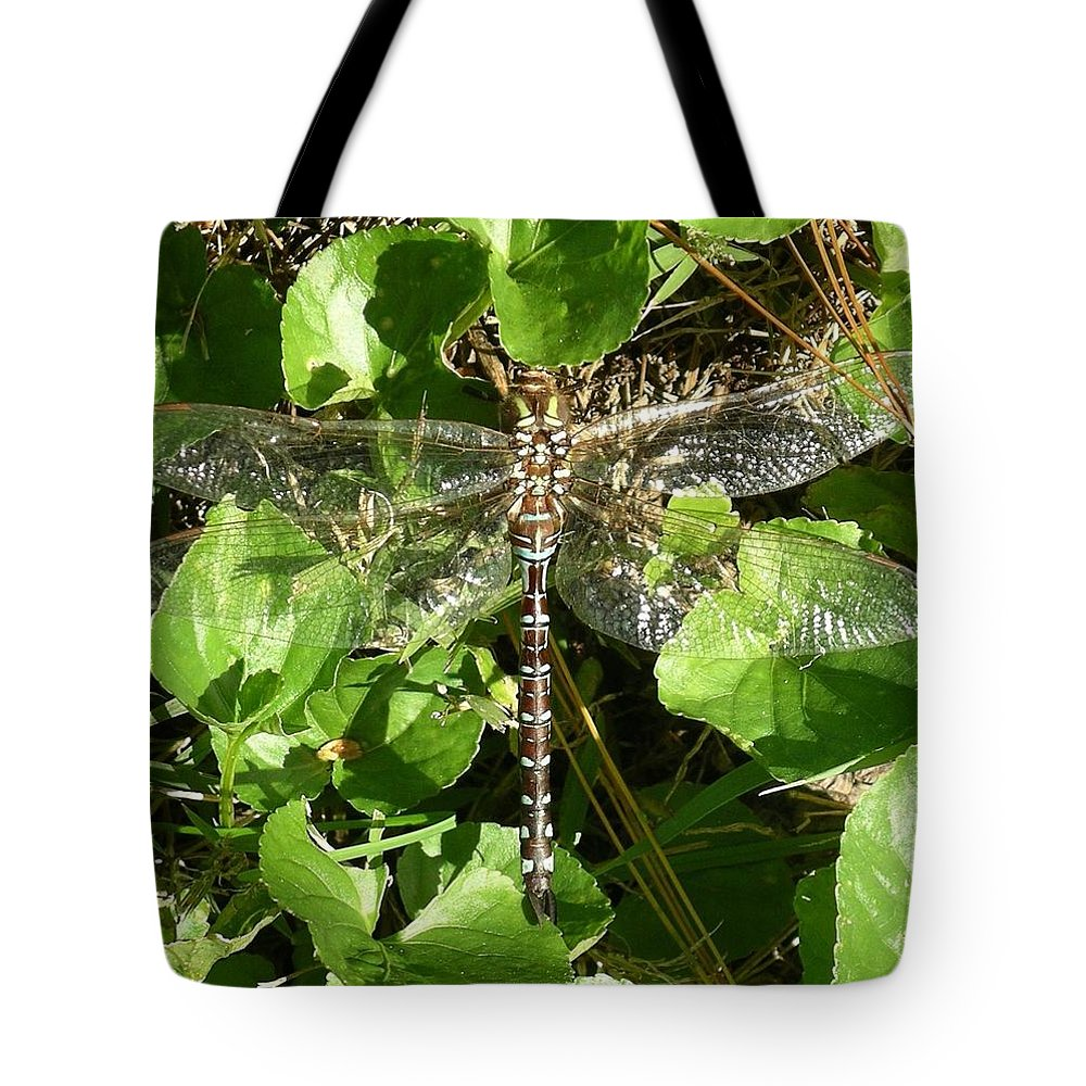 Dragonfly Tote Bag featuring the photograph Dragonfly 1 by Rich Bodane