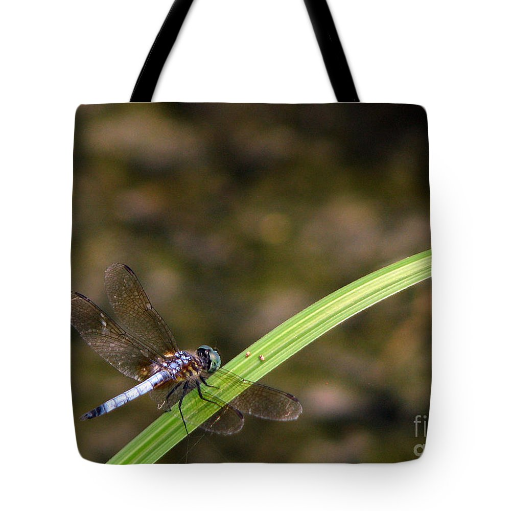 Dragonfly Tote Bag featuring the photograph Dragonfly by Amanda Barcon