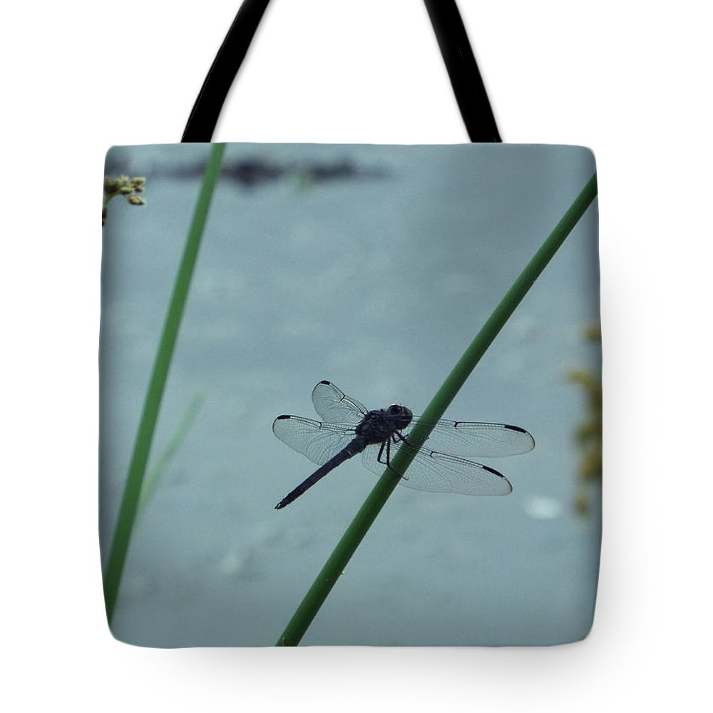 Dragonfly Tote Bag featuring the photograph Dragonfly by Carol Corsaro