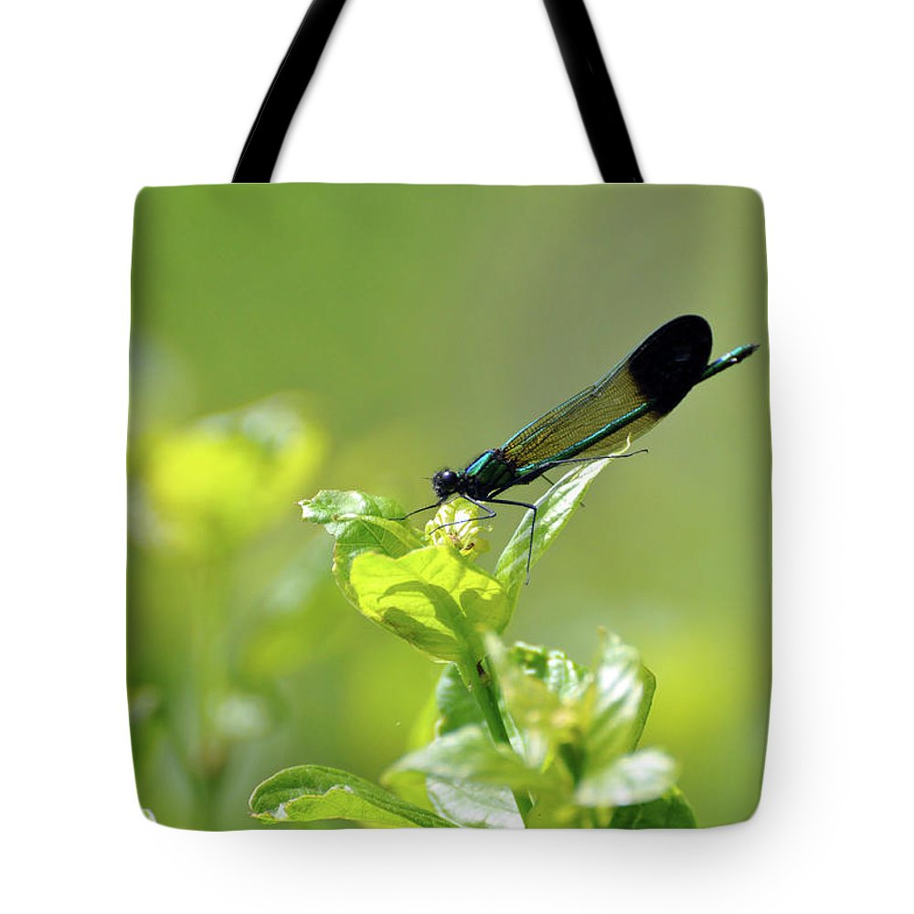 Dragonfly Tote Bag featuring the photograph Dragonfly by Glenn Gordon