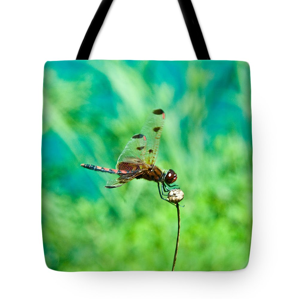 Dragonfly Tote Bag featuring the photograph Dragonfly Hanging On by Douglas Barnett