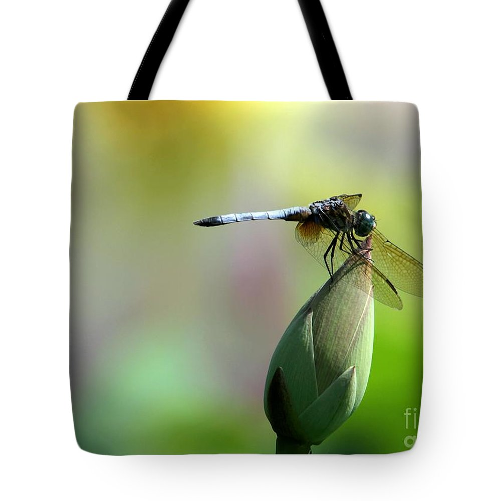 Dragonfly Tote Bag featuring the photograph Dragonfly In Wonderland by Sabrina L Ryan