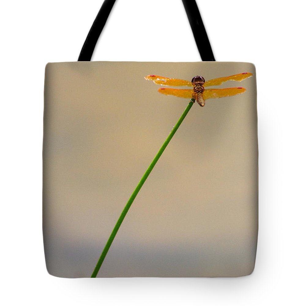 Orange Tote Bag featuring the photograph Dragonfly by Rebecca Raybon