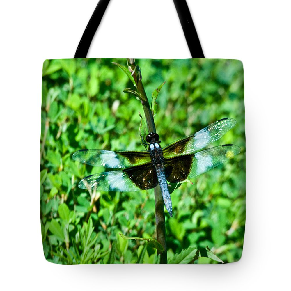 Dragonfly Tote Bag featuring the photograph Dragonfly Resting On Stem by Douglas Barnett