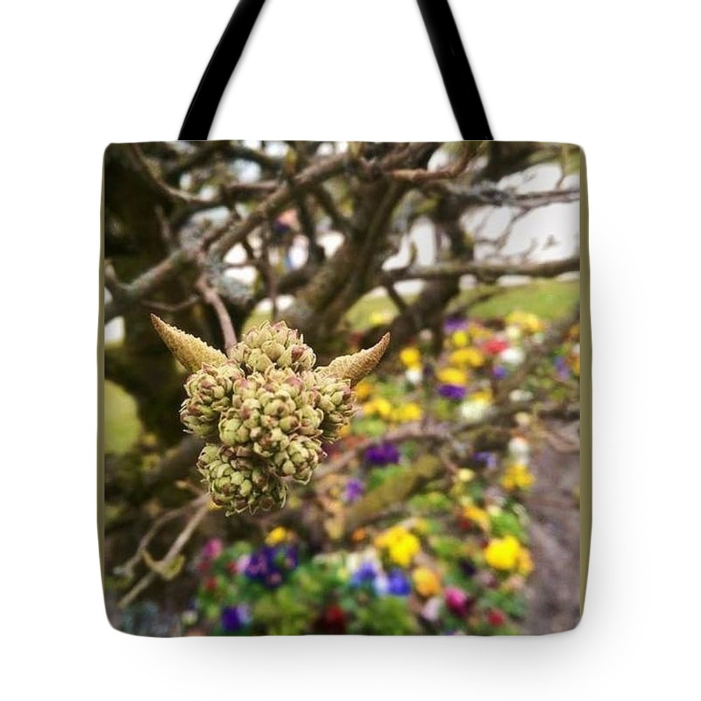 Dragon; Dragons; Exist; Garden; Gardens; Germany; Castle; Castle Grounds Tote Bag featuring the photograph Dragons Do Exist by Alicia Ingram