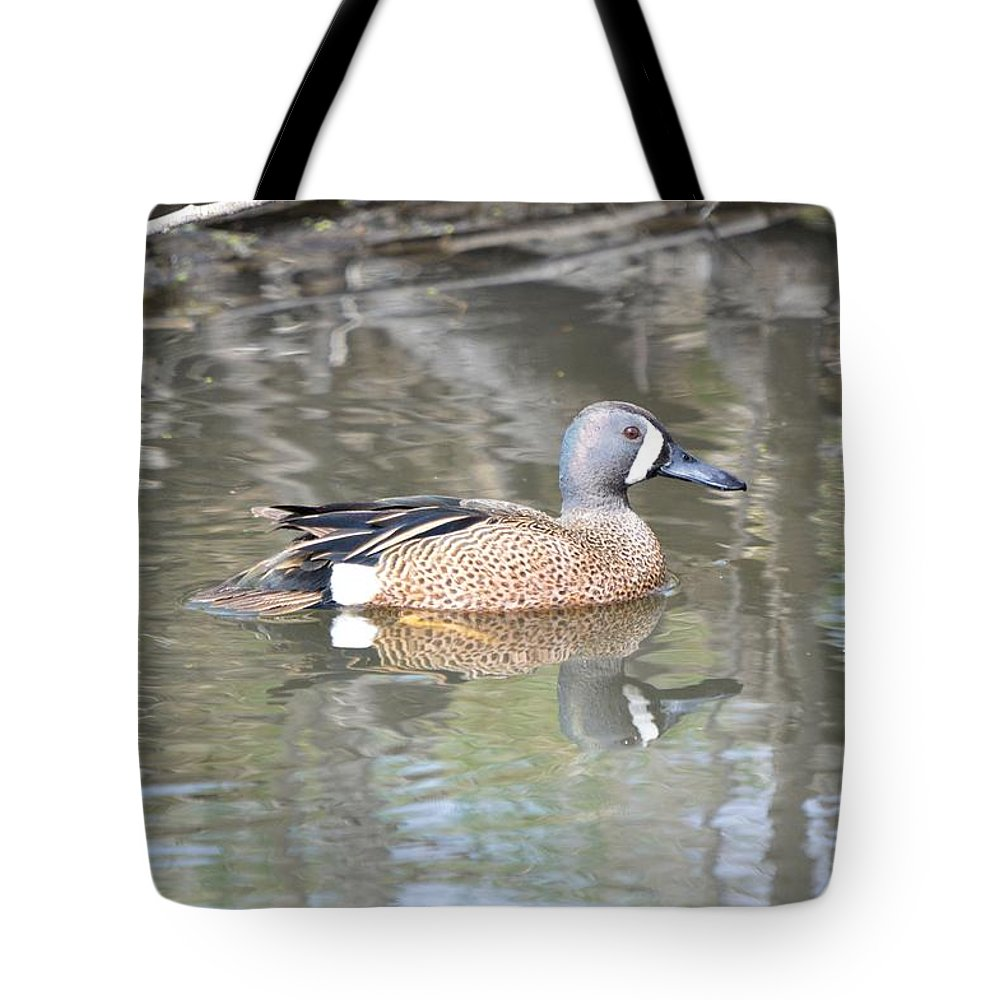 Anas Tote Bag featuring the photograph Drake Blue Wing by Bonfire Photography