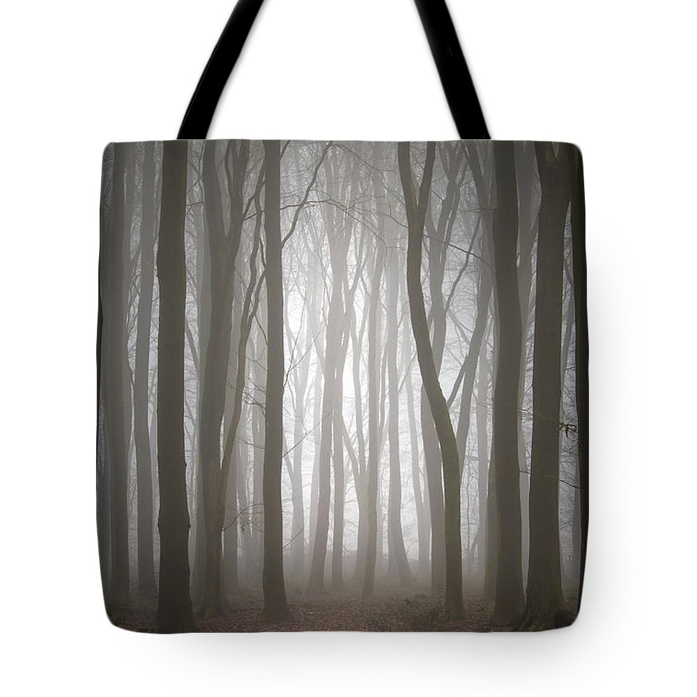 Foggy Tote Bag featuring the photograph Dreamscape Forest by Simon Garratt