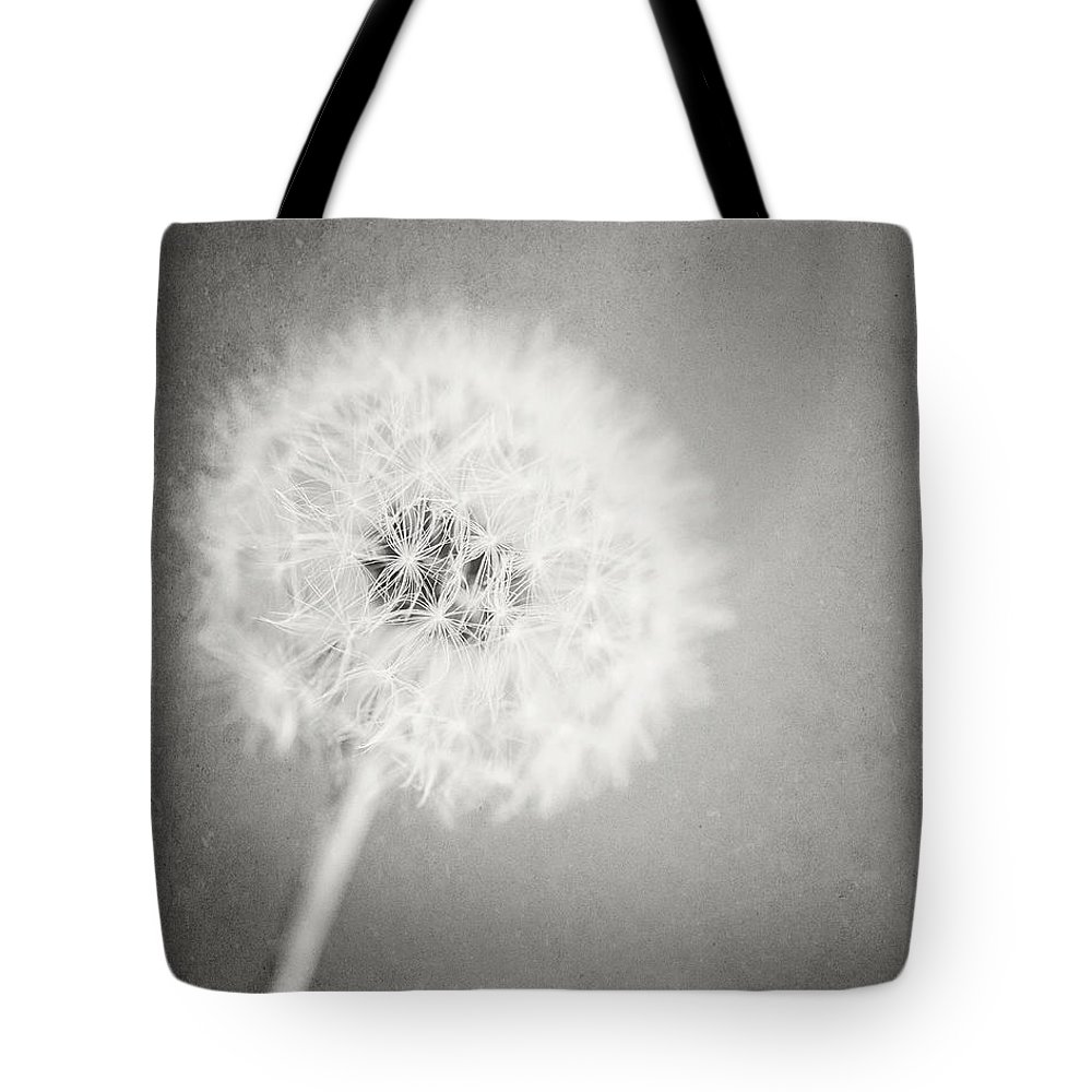 Dandelion Tote Bag featuring the photograph Dreamy Dandelion II by Lisa Russo