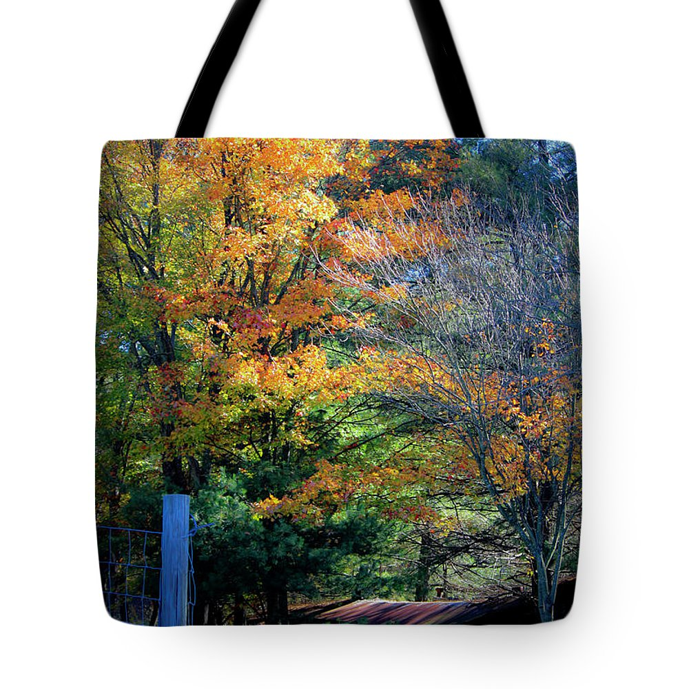 Fall Tote Bag featuring the photograph Dreamy Fall Scene by Teresa Mucha