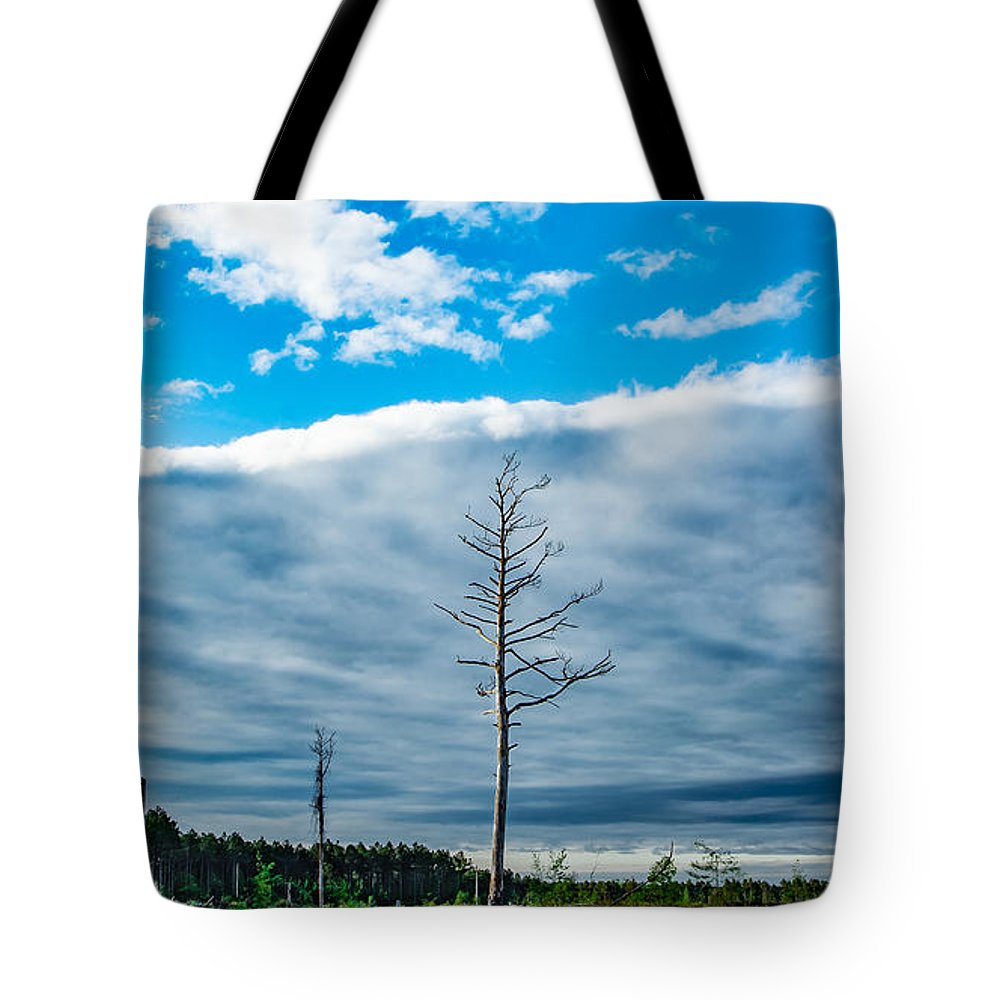 Weather Tote Bag featuring the photograph Drew County Bonanza by M E Cater