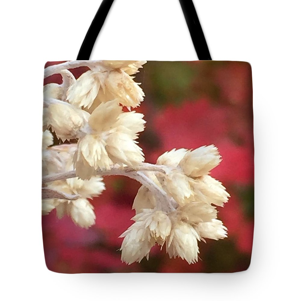 Flower Tote Bag featuring the photograph Dried Flowers by Vonda Drees