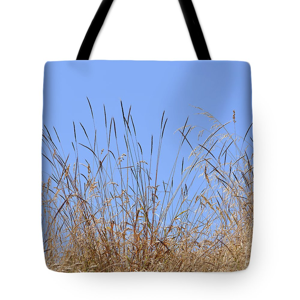 Against Tote Bag featuring the photograph Dried Grass Blue Sky by Marv Vandehey