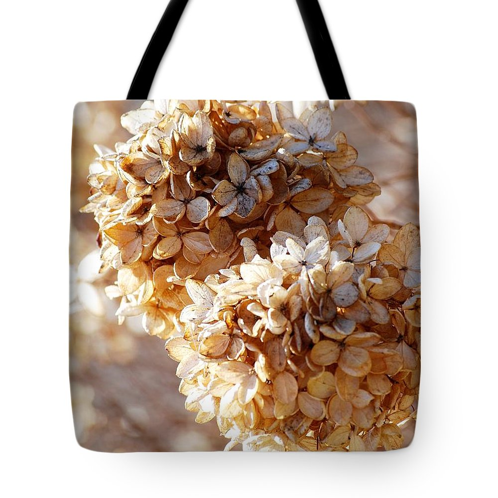 Dried Flowers Tote Bag featuring the photograph Dried Hydrangea Flowers by Carol J Deltoro