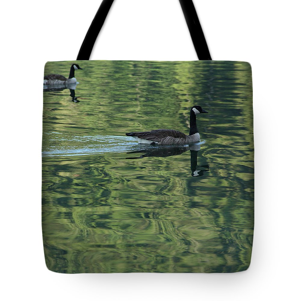 Lake Crescent Tote Bag featuring the photograph Drifting Geese by Marie Leslie