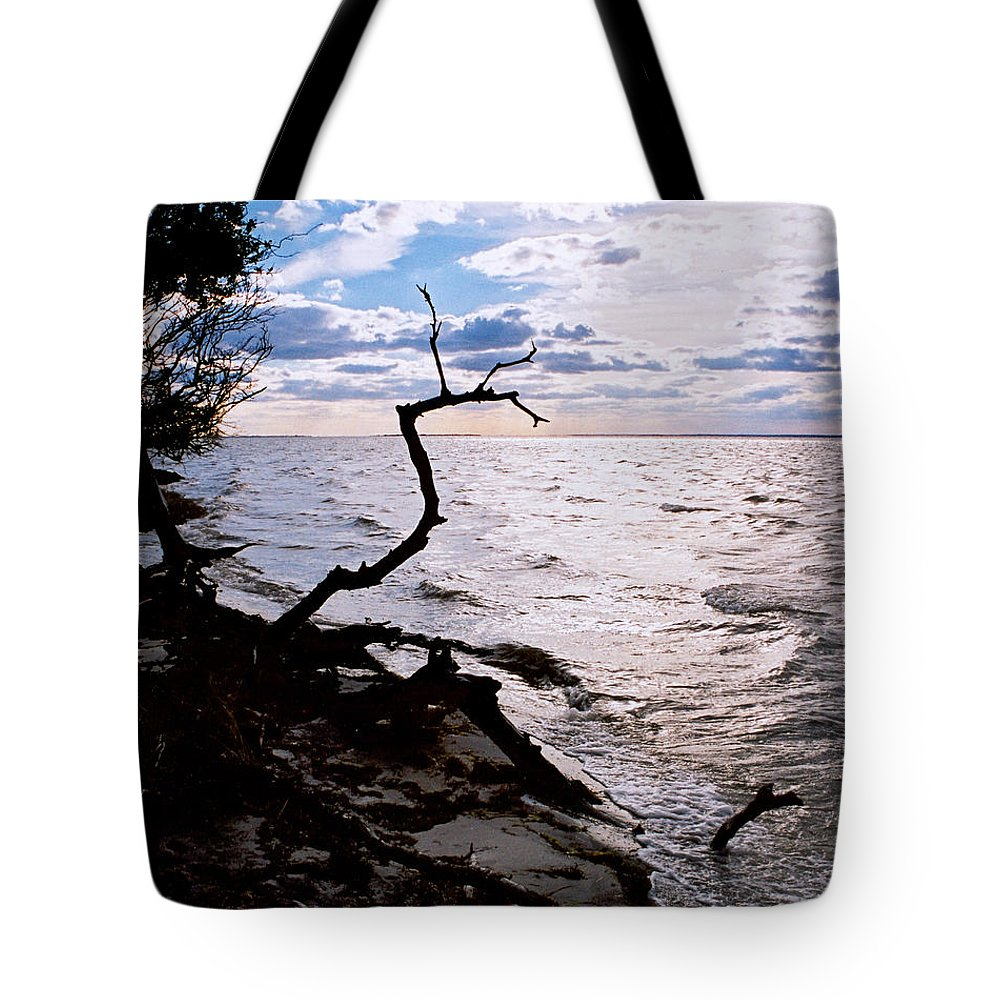 Barnegat Tote Bag featuring the photograph Driftwood Dragon-barnegat Bay by Steve Karol