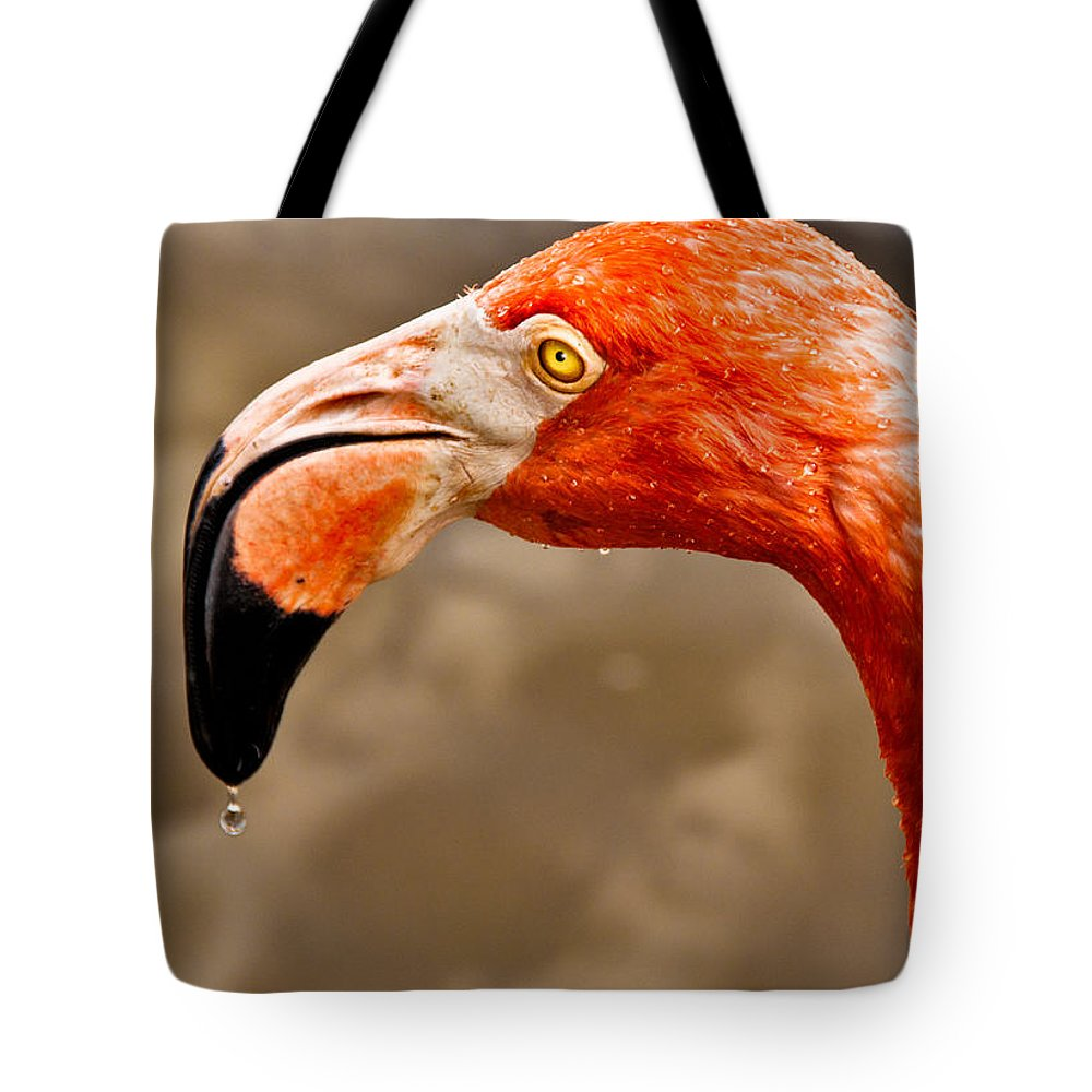 Flamingo Tote Bag featuring the photograph Dripping Flamingo by Christopher Holmes